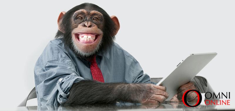monkey_omni